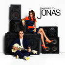 Married to Jonas - Emergency-in-Law artwork