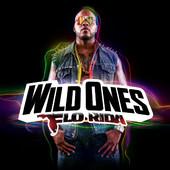 Flo Rida - Wild Ones (Deluxe Version) artwork