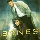 Bones - The Future in the Past artwork